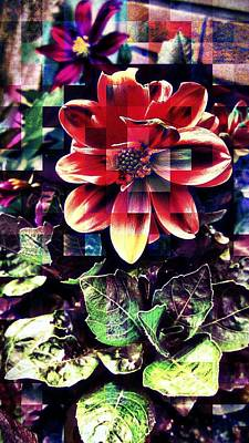 Abstract Flowers Photograph - Abstract Flowers by Chris Drake