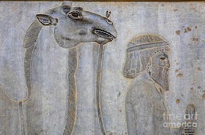 Ancient Persia Photograph - Bas Relief At Persepolis In Iran by Robert Preston