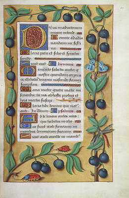 Pattern Books Photograph - Book Of Hours by British Library