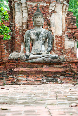 Photograph - Buddha Statue by Yew Kwang