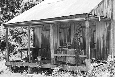 Photograph - Cajun Home by Ronald Olivier