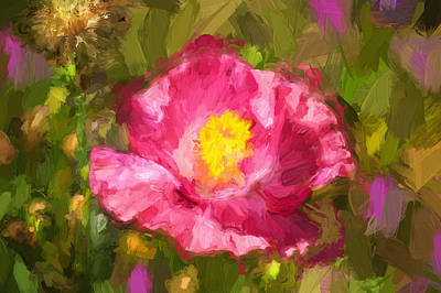 Pink Poppy Blossom Macro Photograph - California Poppies Painted by Rich Franco