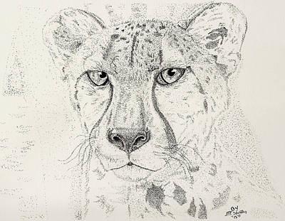 Cheetah Drawing - Cheetah by Matt Steffen