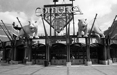 Baseball Murals Photograph - Comerica Park - Detroit Tigers by Frank Romeo