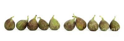 Figs Art Print by Bernard Jaubert