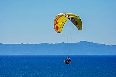 Rincon Beach California Photograph - Flying by Elijah Weber