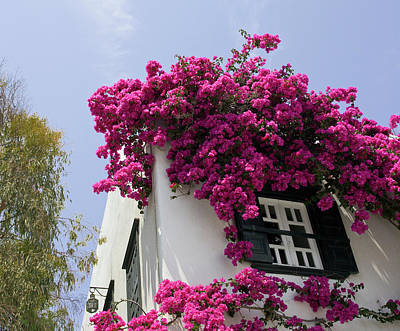Mykonos Photograph - Greece, Mykonos, Hora by Jaynes Gallery