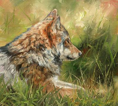 Wild Animals Painting - Grey Wolf by David Stribbling