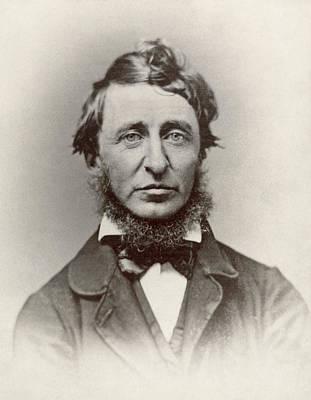 Photograph - Henry David Thoreau by Granger