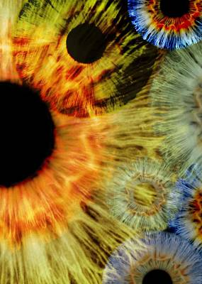 Kaleidoscope Photograph - Human Eyes by Science Photo Library