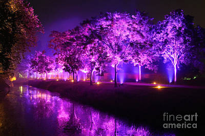Illumina Light Show At Schloss Dyck Germany Art Print by David Davies