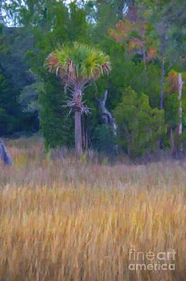 Digital Art - Lowcountry Marsh by Dale Powell