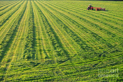 Impressionist Landscapes - Old farm tractor in a field. by Don Landwehrle