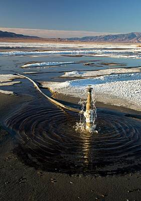Owens Lake Re-irrigation Art Print by Jim West
