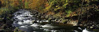 Finger Lakes Photograph - River Flowing Through A Forest by Panoramic Images