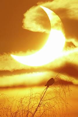 Solar Eclipse Art Print