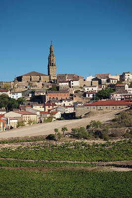 Spain, La Rioja Region, La Rioja Art Print