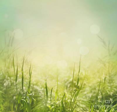 Spring Background Art Print by Mythja  Photography