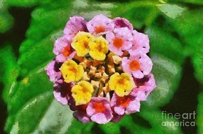 Painting - Lantana Camara Flower Painting by George Atsametakis
