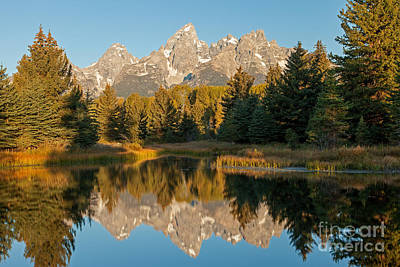 Photograph - The Grand Tetons Schwabacher Landing Grand Teton National Park by Fred Stearns