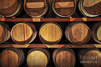 Cellar Photograph - Wine Barrels by Elena Elisseeva