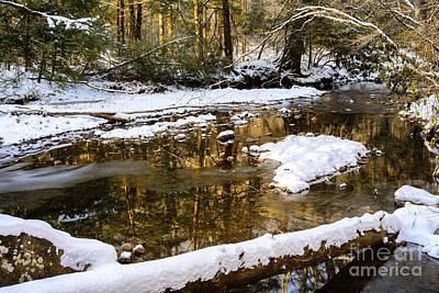 Winter Along Cranberry River Art Print