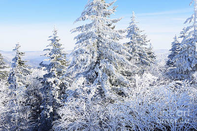 Winter Along The Highland Scenic Highway Art Print by Thomas R Fletcher