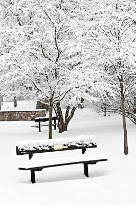 Snowstorm Photograph - Winter Park by Elena Elisseeva