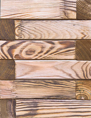 Wooden Panels Art Print by Tom Gowanlock