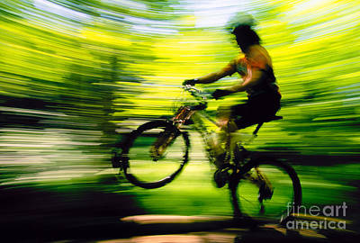 Photograph - Young Man Mountain Biking In A Forest Stowe Vt Usa by Don Landwehrle