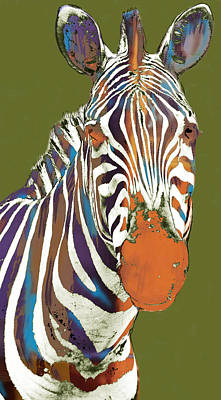 African Mixed Media - Zebra - Stylised Drawing Art Poster by Kim Wang