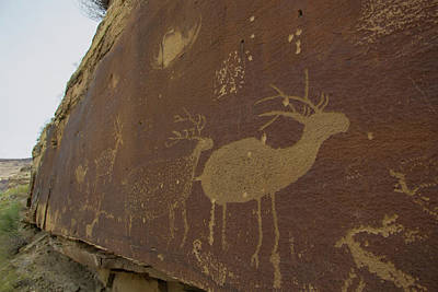 Petroglyph Painting - Rafting In Desolation And Gray Canyons by Taylor Reilly