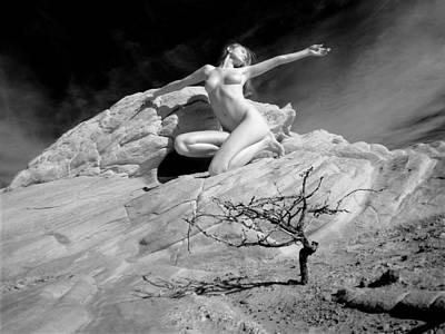 Photograph - 6320 Desert Nude With Tree by Chris Maher