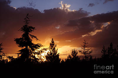Photograph - 645a Sunset by Cindy Murphy - NightVisions
