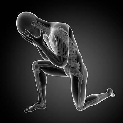 Mental Photograph - Human Skeletal System by Sebastian Kaulitzki