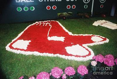 Redsox Photograph - #668 3 Redsox Film.jpg by Robin Lee Mccarthy Photography