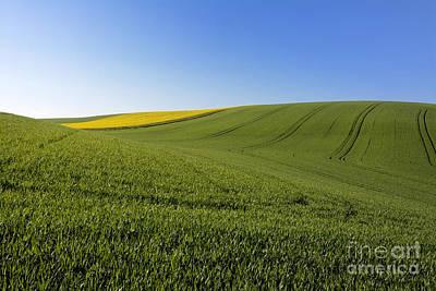 Agricultural Landscape. Auvergne. France. Art Print by Bernard Jaubert
