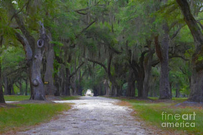 Digital Art - Allee Of Live Oak Tree's by Dale Powell