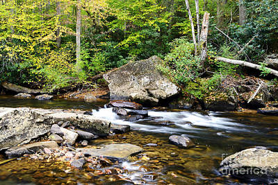 Autumn Along Cranberry River Art Print by Thomas R Fletcher