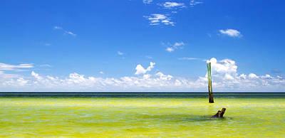 Photograph - Boca Grande Florida by Fizzy Image