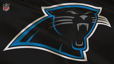 Panther Photograph - Carolina Panthers Uniform by Joe Hamilton