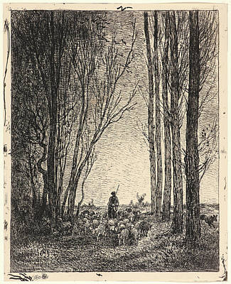 Troupeau Drawing - Charles François Daubigny French by Litz Collection