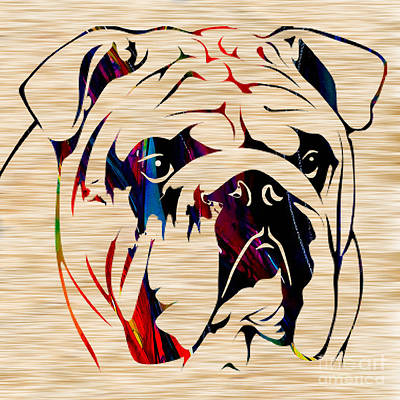 English Mixed Media - English Bulldog by Marvin Blaine