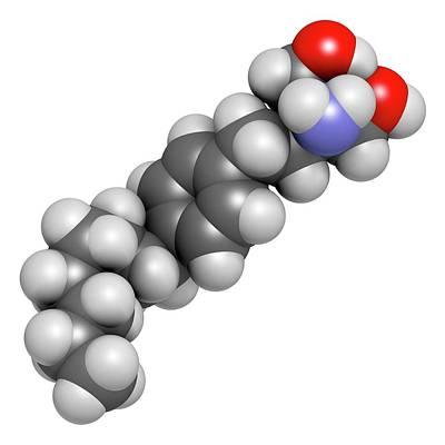 Multiple Sclerosis Photograph - Fingolimod Multiple Sclerosis Drug by Molekuul