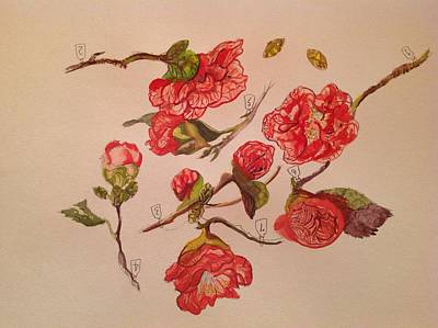 Painting - 7 Flowers by Maria  Disley