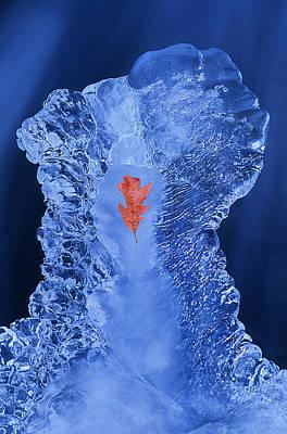 Frozen Beauty Aka Ice Is Nice Iv Art Print