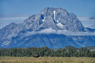 Photograph - Grand Teton National Park, Wy by Mark Newman
