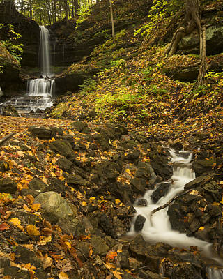 Photograph - Horseshoe Falls by Jack R Perry