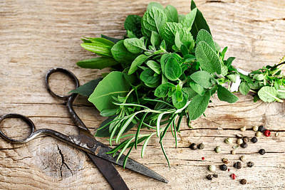 Kitchen Photograph - Kitchen Herbs by Nailia Schwarz