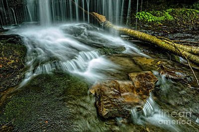 Lin Camp Branch Waterfall Art Print by Thomas R Fletcher
